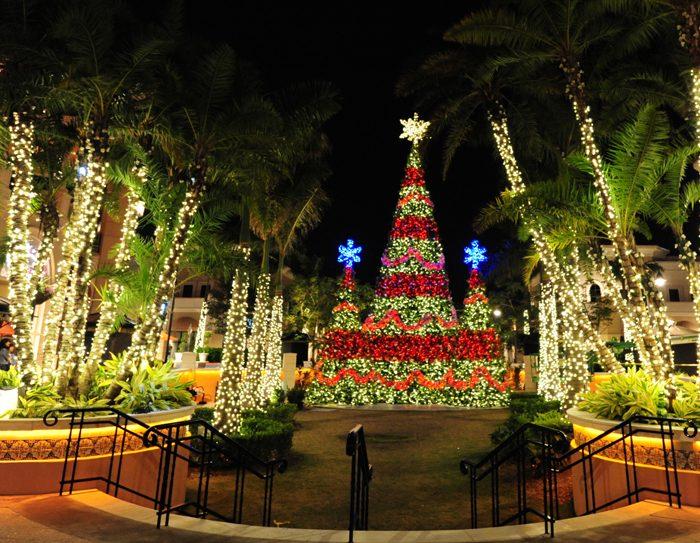 Световое шоу в Майами