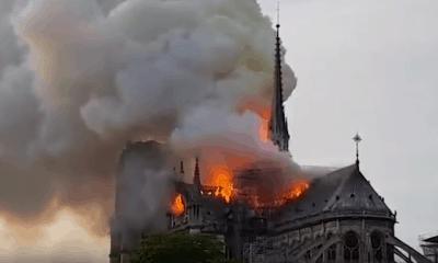Соборе Парижской Богоматери
