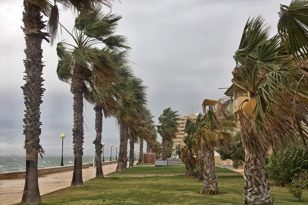 сезон ураганов